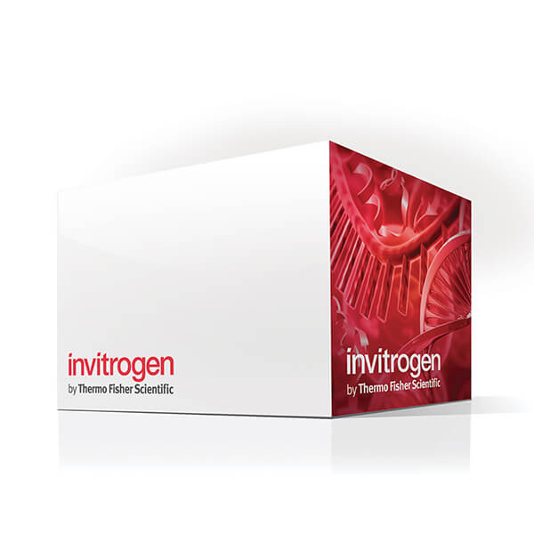 Save 30% on Invitrogen Purification Products