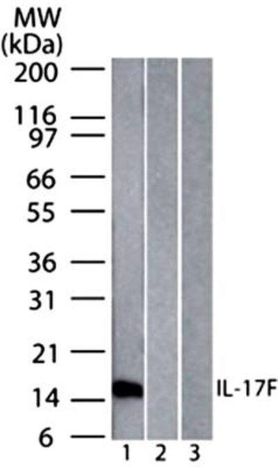 NBP227327